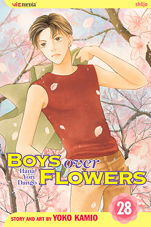 Boys Over Flowers, Vol. 28
